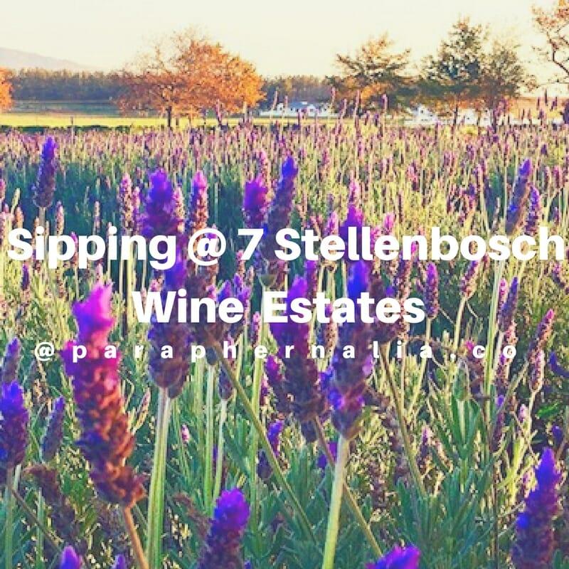 South Africa: Sipping 7 Stellenbosch Wine Estates!